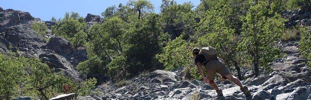 Abren acceso para ascender a la cumbre del cerro La Campana en Olmué