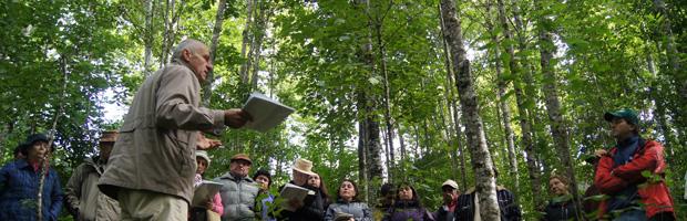 Ley de Bosque Nativo adjudica más de $3 mil 700 millones en bonificaciones