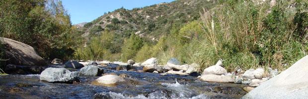 Con actores locales Clarillo celebra el Día Internacional de los Parques Nacionales