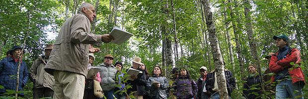 Consejo de Política Forestal entrega directrices sectoriales 2015-2035