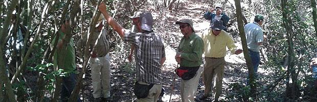 Propietarios forestales y agricultores de Alhué se capacitan sobre Ley de Bosque Nativo