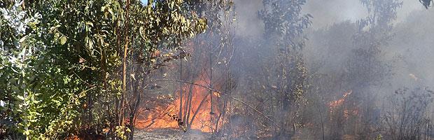 Disminución del humo producto de los incendios facilita trabajo de brigadistas