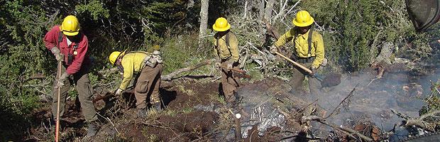 Curso de prevención de incendios forestales a comunas críticas de RM