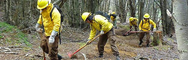 Más recursos aéreos y terrestres para incendio que amenaza P.N. Tolhuaca