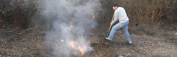 CONAF suspende uso del fuego para quemas agrícolas y forestales en región del Biobío