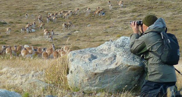 Director Ejecutivo de CONAF felicita a guardaparques de Torres del Paine