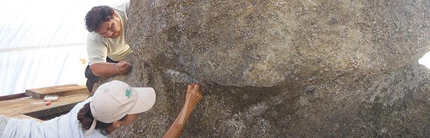 Se inician trabajos para conservación del Moai a Vere en Parque Nacional Rapa Nui
