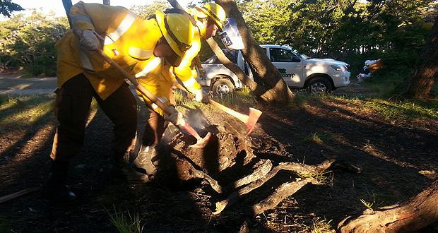 CONAF valoró precauciones tomadas por magallánicos en actividades de fin de año