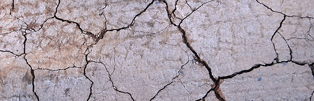 Comienza la actualización del Plan de Acción Nacional de Lucha Contra la Desertificación de Chile
