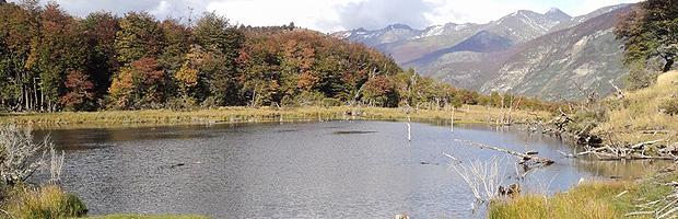 Se cumplen 6 años de la creación del Parque Nacional Yendegaia
