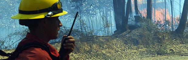 156 incendios forestales activos en el país