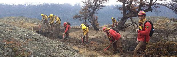 177 incendios forestales se registraron hoy en el país
