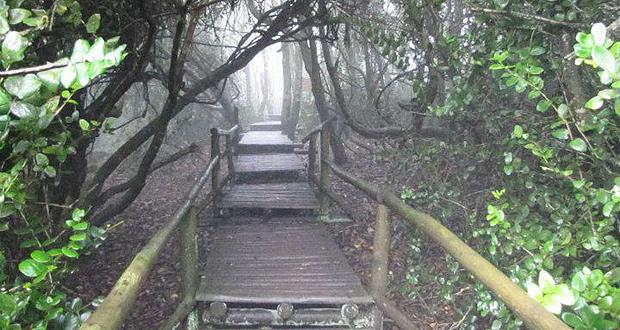 Parque Nacional Bosques de Fray Jorge.