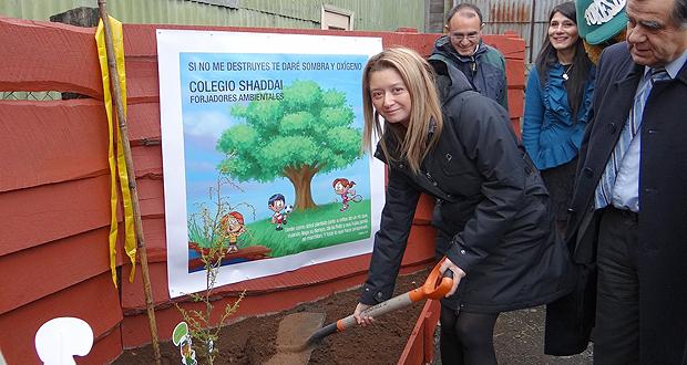 Día Mundial del Árbol se celebró plantando en Osorno.