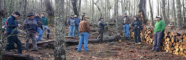 Mesa de fiscalización de la leña de Aysén fortalece actividad productiva sustentable del bosque nativo
