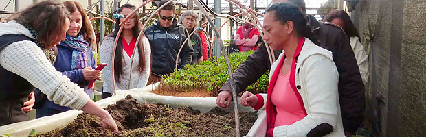 Funcionarios del Vivero Mataveri Otai en taller de plantas medicinales