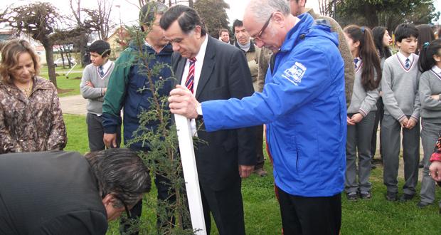 CONAF apoya plan de descontaminación de Osorno con donativo de árboles.