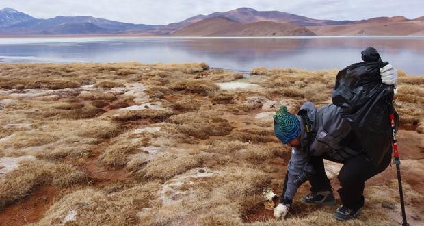 Club de Montaña limpió el sector de laguna Santa Rosa en el Parque Nacional Nevado de Tres Cruces.