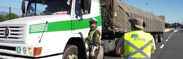 Rigurosa fiscalización al transporte de productos primarios del bosque nativo