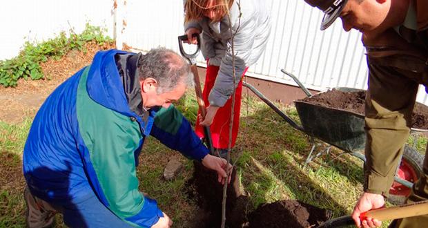 Programa de Arborización apoya mejoramiento de áreas verdes de Villa Cerro Castillo.