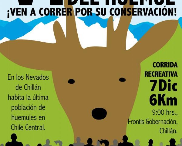 Afiche VI Corrida por la Conservación del Huemul