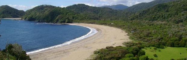 Chile, Colombia y Panamá evalúan crear nuevas reservas de la biósfera