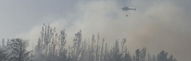 CONAF y Onemi decretan alerta preventiva por ola de calor en zona central del país