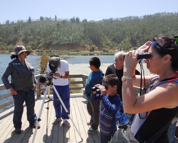 Visitas guidas en humedal de Cáhuil, Pichilemu.