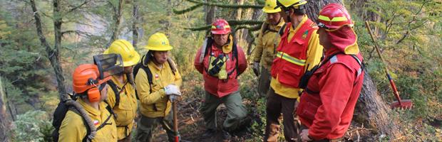 CONAF implementa unidad de restauración para coordinar trabajos en áreas afectadas por incendios forestales