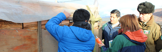 Fiscalización preventiva al transporte y comercialización de leña en Coyhaique