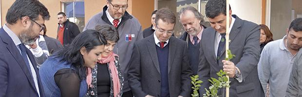 CONAF aporta árboles a nuevo proyecto habitacional de Pudahuel