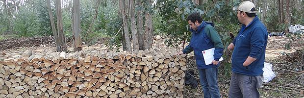 CONAF promueve el uso de la leña seca y de origen legal en provincia de San Antonio