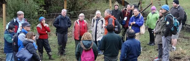 Expertos forestales de 12 países revalidan su compromiso con la conservación de bosques templados y boreales