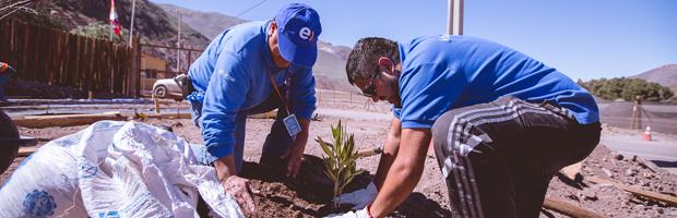 CONAF y privados plantan árboles en zona afectada por los aluviones de marzo