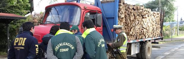 CONAF, PDI, SII y Carabineros realizan fiscalización a transporte de madera