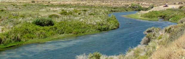 CONAF gestiona ingreso de humedal como sitio Ramsar