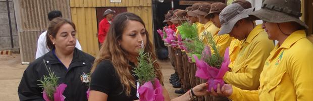 Municipalidad de Viña del Mar destaca abnegada labor de brigadistas forestales