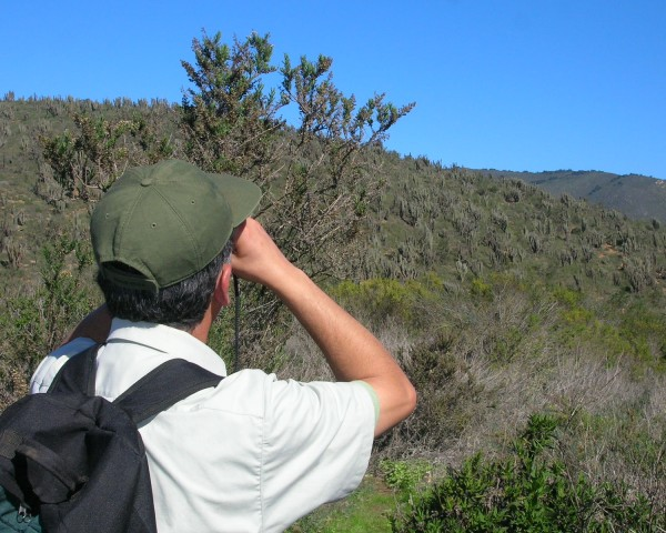 Guardaparque del PN Bosque Fray Jorge.