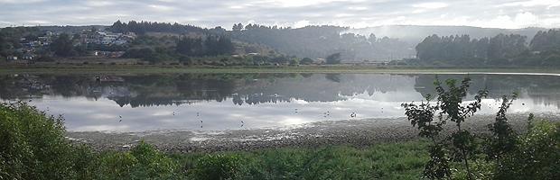 Aumento del caudal de agua y regreso de avifauna en Laguna El Peral