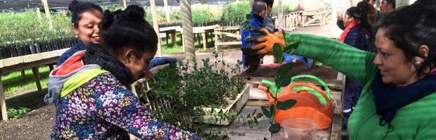 Jóvenes con discapacidad aprenden técnicas de cultivo en la Reserva Lago Peñuelas