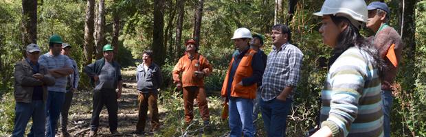 Consultores opinaron en relación a los valores del concurso de bosque nativo