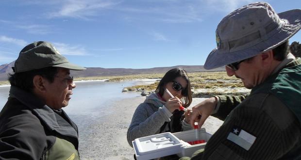 La visita a la región de Arica y Parinacota concluyó con un recorrido de terreno para la toma de muestras biológicas.