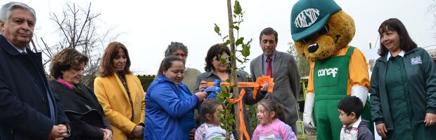 CONAF y JUNJI firman convenio para arborizar 3.000 jardines infantiles