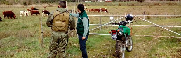 CONAF Los Ríos fiscaliza predios y parcelas en el marco del Plan de Descontaminación Atmosférica de Valdivia