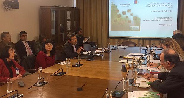 Cavieres argumentó ante los legisladores de la Cámara Baja, que el sector forestal constituye un significativo aporte para la economía del país.