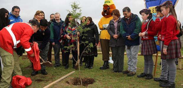 2.600 metros cuadrados tiene el nuevo parque de la población Vista Hermosa, el que cuenta con áreas verdes y juegos infantiles.