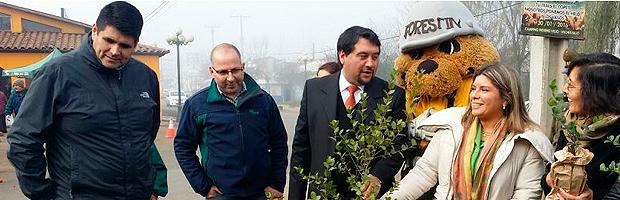 Con anuncio de arborización del bypass de la comuna, CONAF celebró el día del árbol en San Clemente
