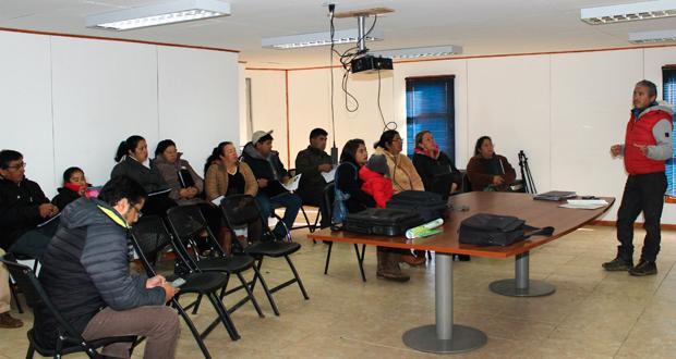 Comunidades mapuches son capacitadas en manejo de viveros for Manejo de viveros forestales