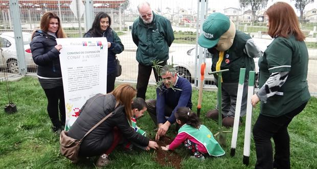 Plantación de especies nativas en el jardín infantil Estrellita de Los Ríos, de la comuna de Valdivia.
