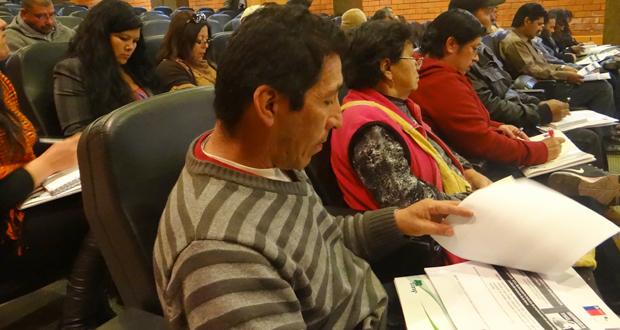 Cerca de 30 comunidades de la región de Atacama participaron del diálogo indígena